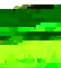 Race Face Nano Packable Jacket - Lime